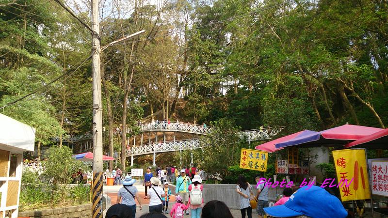 1040404-嘉義熊大庄&竹崎公園-天空步道-14.jpg