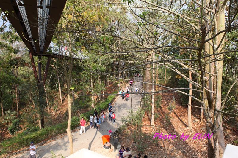 1040404-嘉義熊大庄&竹崎公園-天空步道-28.jpg