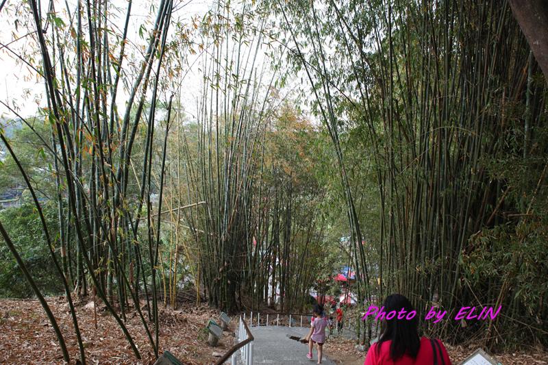 1040404-嘉義熊大庄&竹崎公園-天空步道-29.jpg