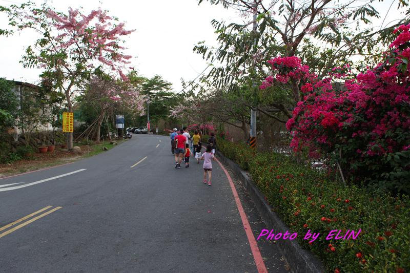 1040404-嘉義熊大庄&竹崎公園-天空步道-36.jpg