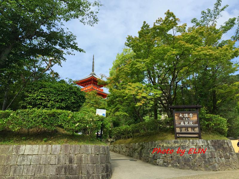 1050604.05.06.07.08-日本京阪之旅Day2-31.jpg