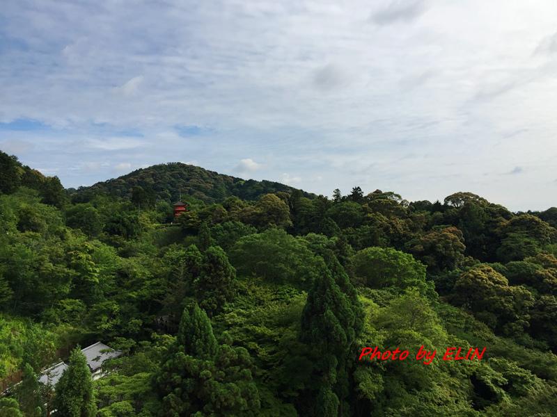 1050604.05.06.07.08-日本京阪之旅Day2-39.jpg