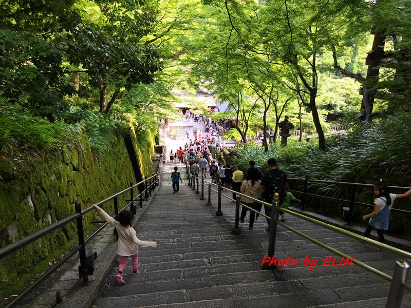 1050604.05.06.07.08-日本京阪之旅Day2-46.jpg