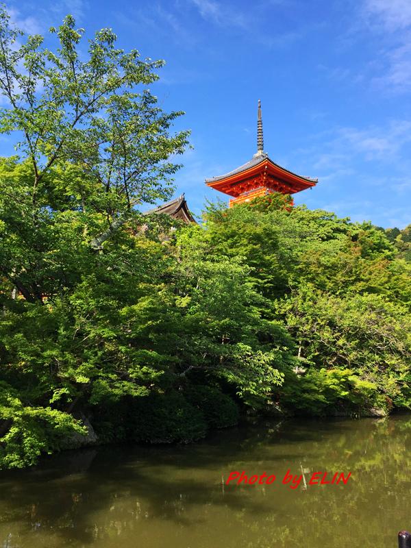 1050604.05.06.07.08-日本京阪之旅Day2-47.jpg