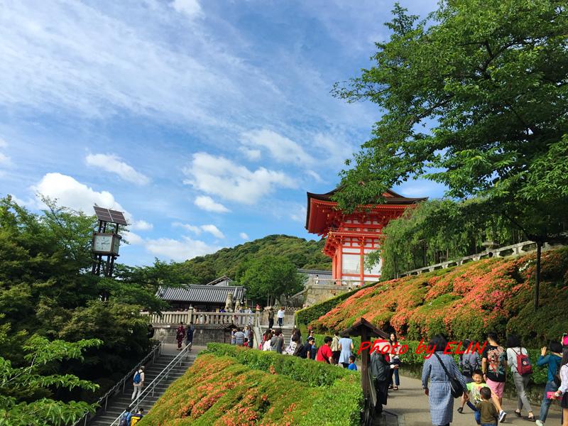 1050604.05.06.07.08-日本京阪之旅Day2-32.jpg