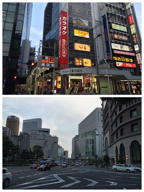 1050604.05.06.07.08-日本京阪之旅Day3-41.jpg