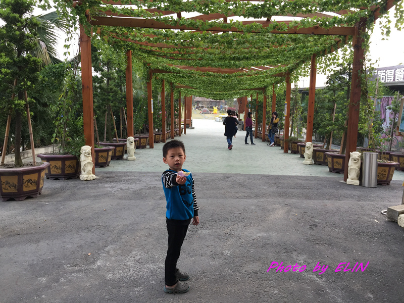 1051224.25.26-南投國姓水中月露營趣-95.jpg