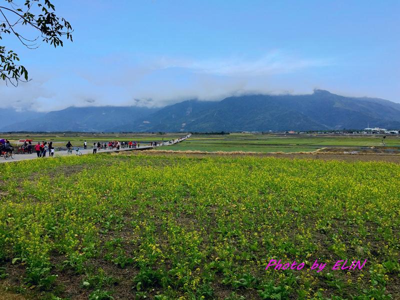1060203.04.05-台東鹿野溪遊記露營趣-51.jpg