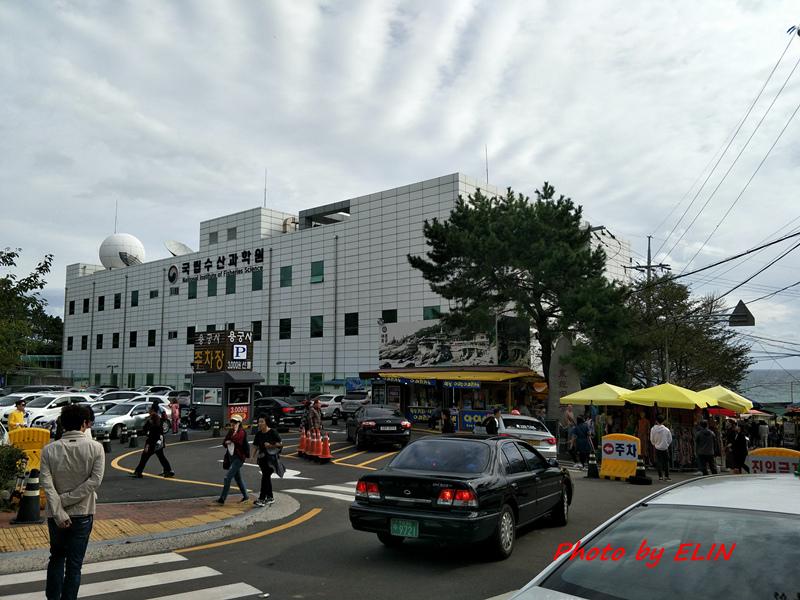 1060930-1007-韓國(首爾&釜山)自由行8日遊-168.jpg
