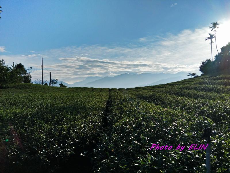 1071124.25-大鞍幸福農場露營趣&竹山寶島肉圓-56.jpg