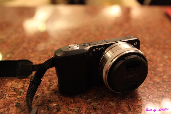 991031-SONY NEX-3(1).jpg