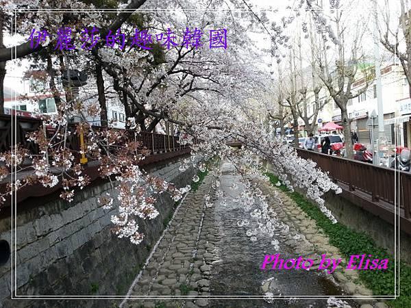 20130402_142057 (640x480)