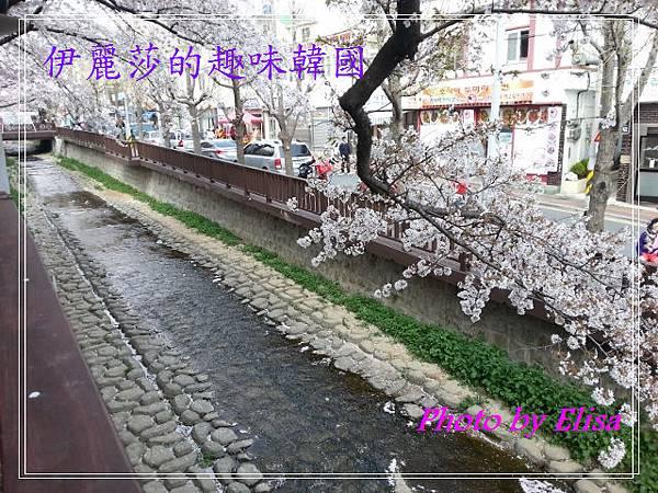 20130402_142228 (640x480)