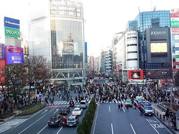 LIVE HOUSE叢林大冒險_涉谷 01.jpg