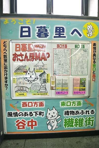 抱著貓我們一起拍MV_谷根千 16.JPG