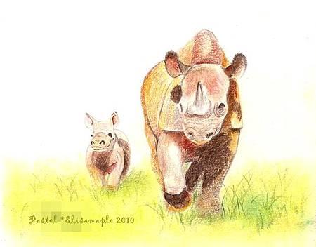 mom&baby02__Rhino