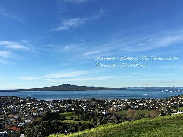 NZ20180008.JPG