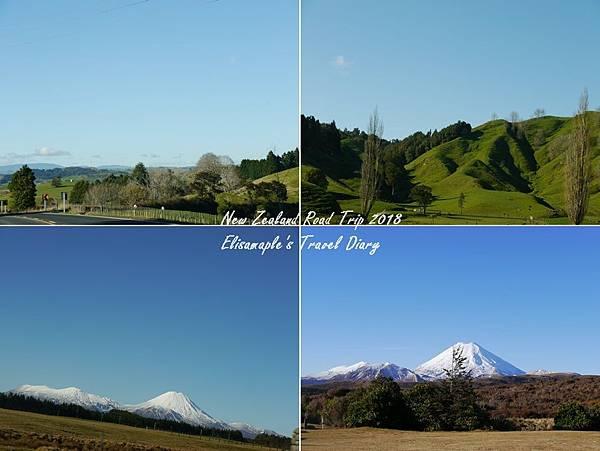 NZ20180177-tile.jpg