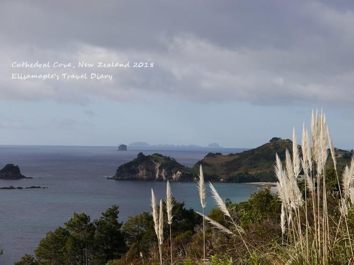 NZ20180206.JPG
