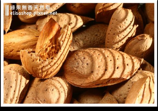 綠果天然油品:甜杏仁油 Sweet Almond Oil