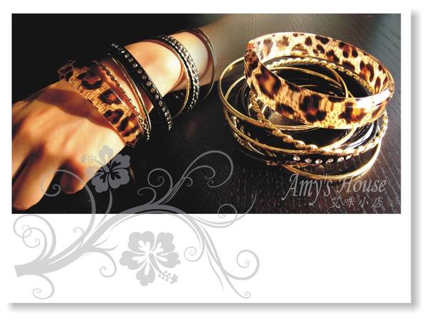 非洲獵豹1.jpg