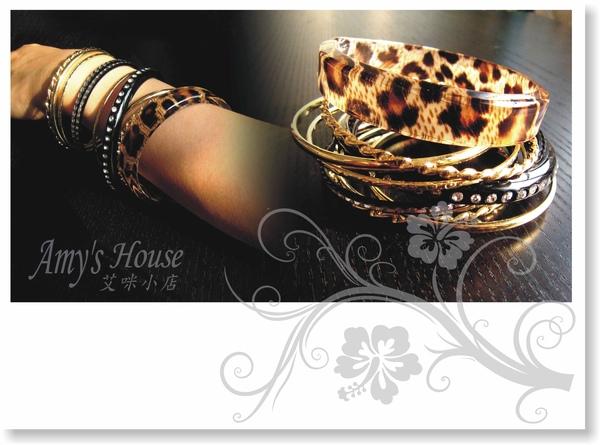 非洲獵豹2.jpg