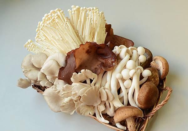 菇菇組產品照01