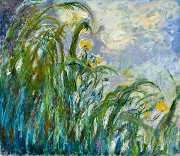 1924-25 黃色鳶尾花 The Yellow Iris_130x152cm.jpg