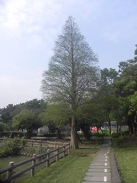 20170414大湖公園 (26).JPG