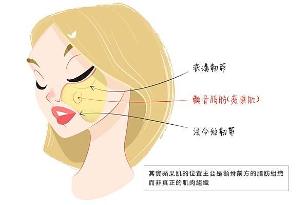 Ellanse洢蓮絲膠原蛋白蘋果肌下垂老化鬆弛抗老微整型拉提中段臉 (3).jpg