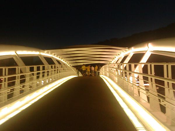 西子灣橋夜景2.JPG