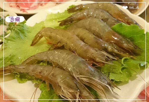 永和-錢林(白蝦)
