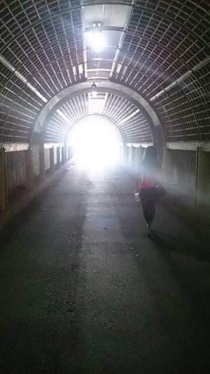 台東森林公園-花園隧道.jpg