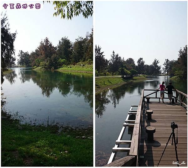 台東森林公園-琵琶湖.jpg