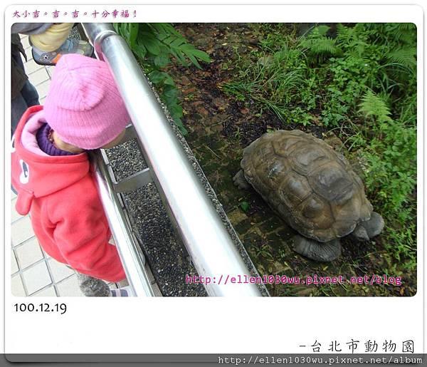 動物園-0004.jpg