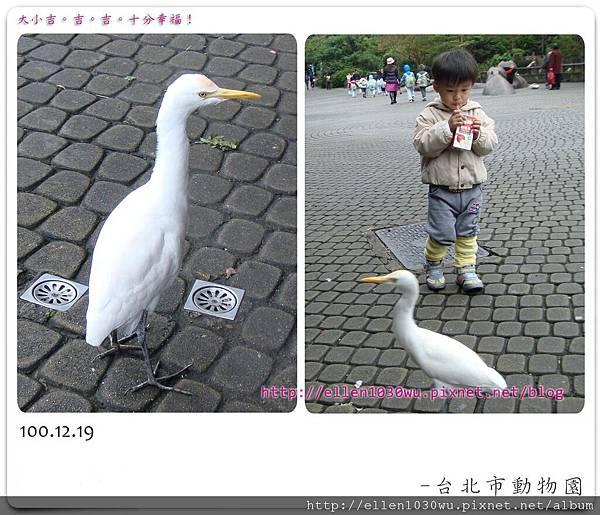 動物園-0014.jpg