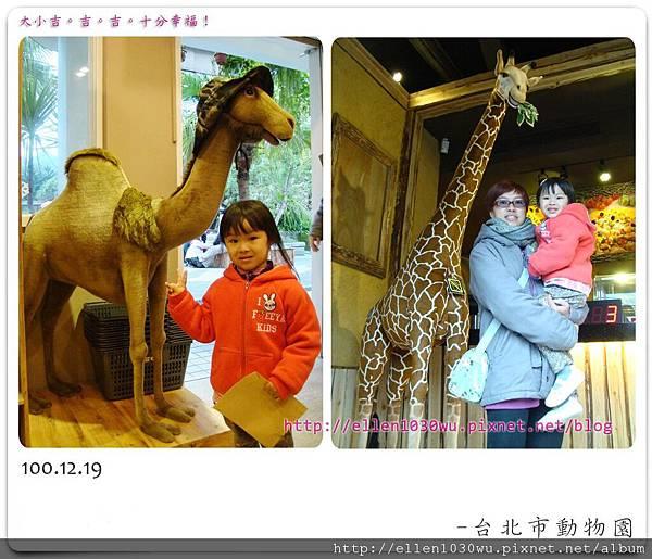 動物園-0016.jpg