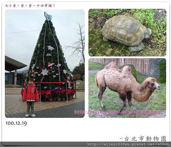 動物園-0020.jpg