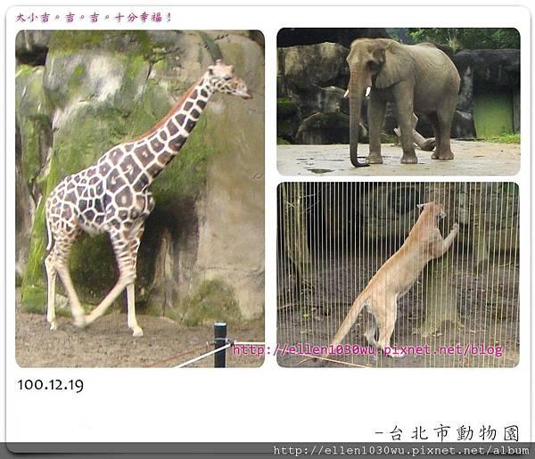 動物園-0021.jpg