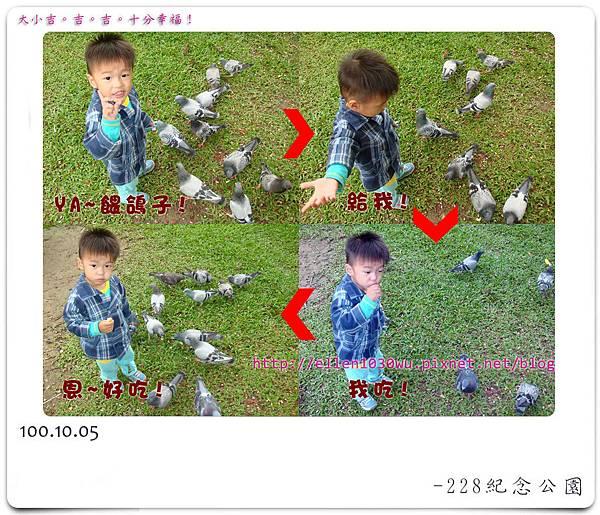 餵鴿子.jpg