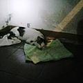 9月6日四大分解 (1).jpg