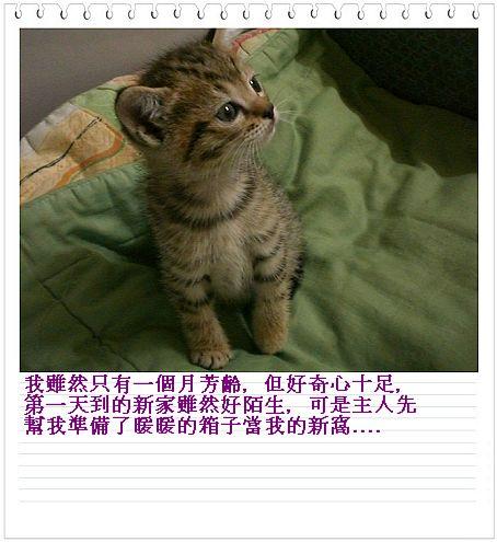 CIMG73681.jpg