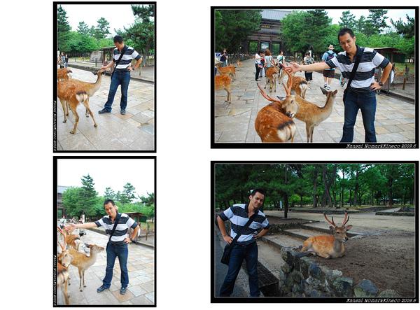 Nomar vs 鹿.jpg
