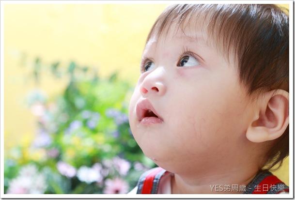 JiaJing_0064