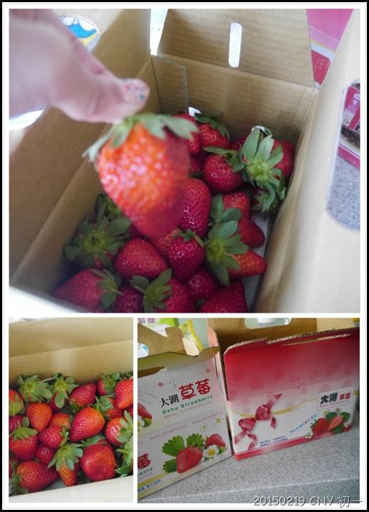 心酸的草莓2