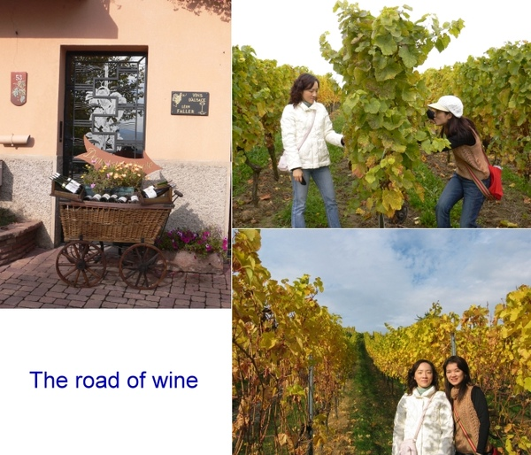 04_Road-of-Wine.jpg