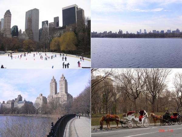 1_Central Park.jpg