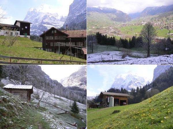 4_Grindelwald.jpg