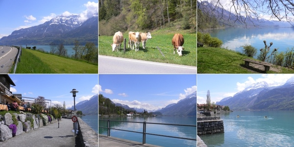 6_Lake-Brienzersee.jpg