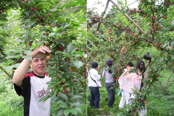 07_阿重的免費蜜桃吃到飽.jpg